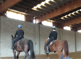 Master Horsemanship Training in Prescott, AZ